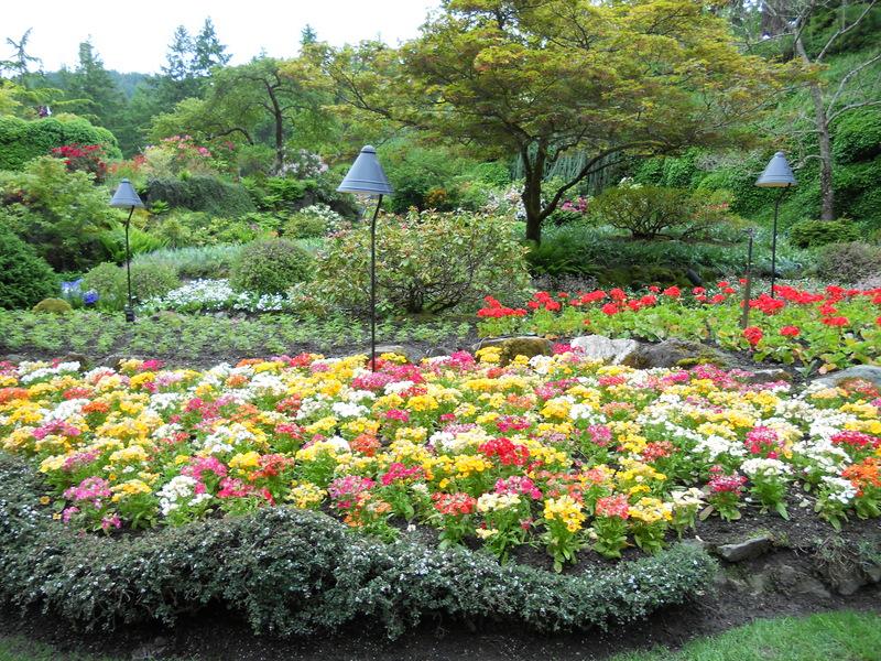 加拿大-溫哥華島---The Butchart Gardens -花園一角