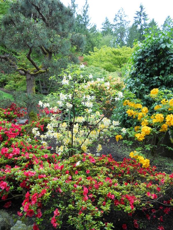 加拿大-溫哥華島---The Butchart Gardens