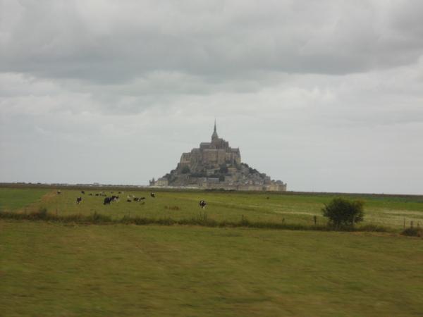 Le Mont Saint Michel 聖米歇爾島 近處藍天下成群的綿羊、牛隻正埋頭吃草
