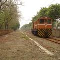 一條穿梭高雄大都會中的鐵道,樹;路;鐵道加火車交織高雄市另種美,歡迎參閱