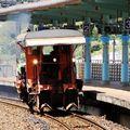 """台鐵路線上的""""神秘客"""",出現總帶來驚喜,歡迎參閱"""
