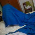 隔天一早 賴床許久又拒絕拍攝的喵大人