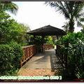 理想大地-小島上步道橋樑(234)