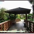 理想大地-小島上步道橋樑(235)