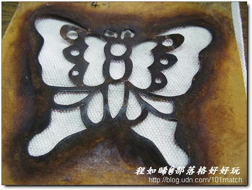 蝴蝶的造型