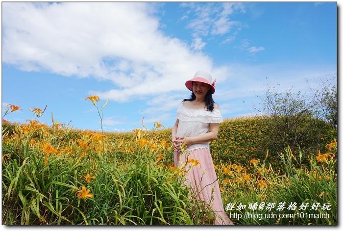 花蓮赤柯山曬幸福》黃橙橙金針花開滿山頭,賞花行正是時候!