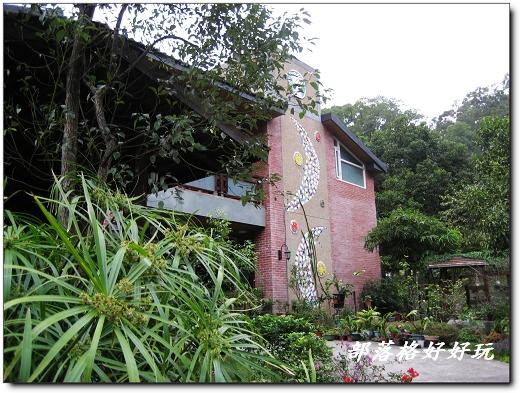 晨曦姐姐的山中花園享譽網路城邦,是個人人稱羡的世外桃源。