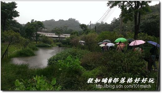 我們一行人在雨中踩在木屑步道上遊園,由於天色愈來愈昏暗,雨也愈下愈大,不得不草草結束!