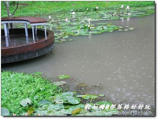 親水性自然生態景觀空間