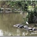 大湖公園錦帶橋 - 35