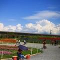 屏東農業博覽會