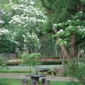 桐花樂活公園-客家大院