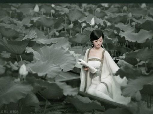 最美的氣質— 書卷氣 - 亮麗 - 亮麗的博客