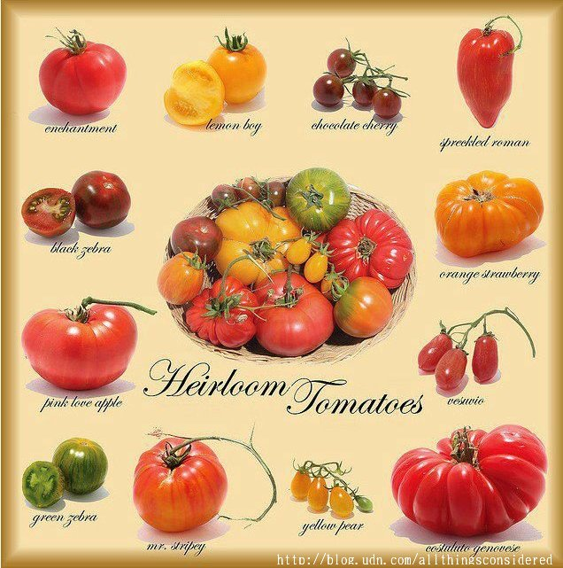heirloom tomato 1