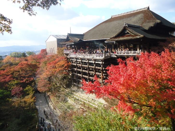 漫天火红的枫叶 ~ 寻找记忆中的秋日美景!