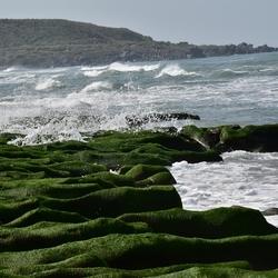 老梅海边绿石槽
