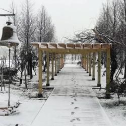 南京涵碧樓雪景真的太美了