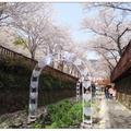 韓國很多景點皆因電視劇而出名,餘左川就是因「羅曼史」拍攝成為鎮海著名的賞櫻勝地。