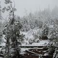 黄石公园雪景