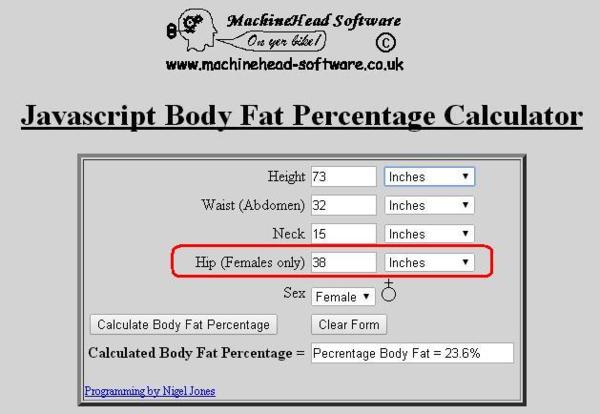 脂肪 率 基準 体