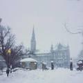 校园雪景 - 20