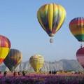 *熱氣球照片00034.jpg