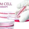*幹細胞照片0001