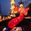 (091)2013台灣燈會在新竹-仙女花燈