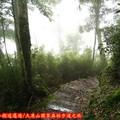 (015)大凍山國家森林步道