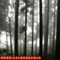 (016)大凍山國家森林步道