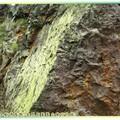(056)茶壺山-氧化鐵礦與青苔