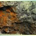 (057)茶壺山-氧化鐵礦與青苔