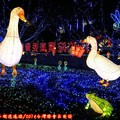 (246)農村燈區-農村生態區