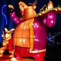 (194)新桃樂農燈區-彩虹樂團