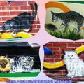 (219)雲林頂溪社區-屋頂上的貓
