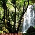 (109)滿月圓森林遊樂區-處女瀑布