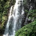 (113)滿月圓森林遊樂區-處女瀑布