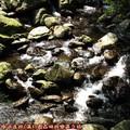 (115)滿月圓森林遊樂區-蚋仔溪