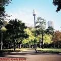 (005)雪梨-海德公園(雪梨塔)