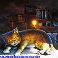 (10)雲林頂溪社區-屋頂上的貓