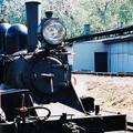 (255)墨爾本-丹頓農區古董蒸汽火車頭