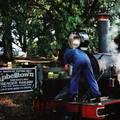 (262)墨爾本-丹頓農區古董蒸汽火車