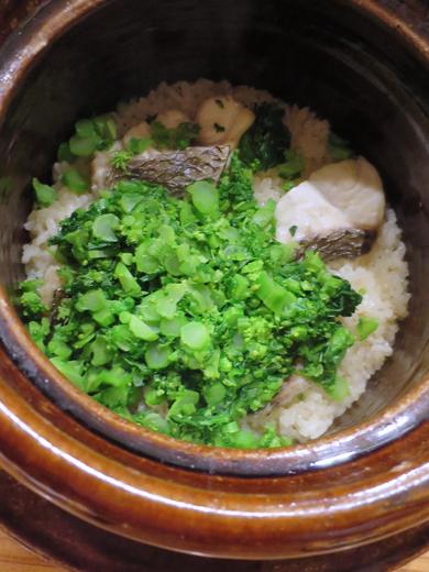 鯛魚菜の花飯