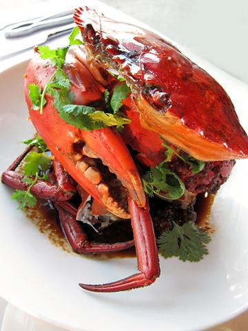 巨大 Mud Crab