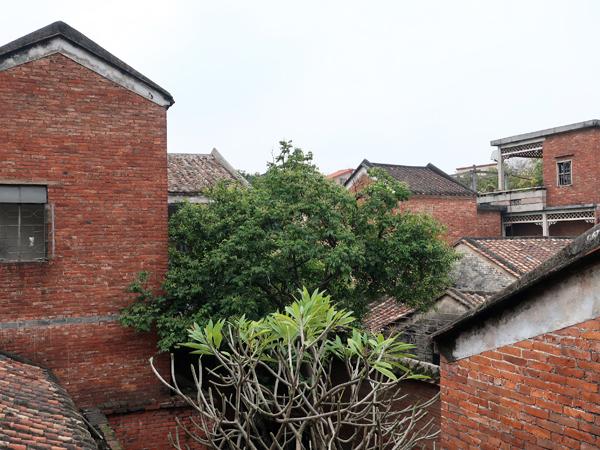 二樓看四鄰房舍