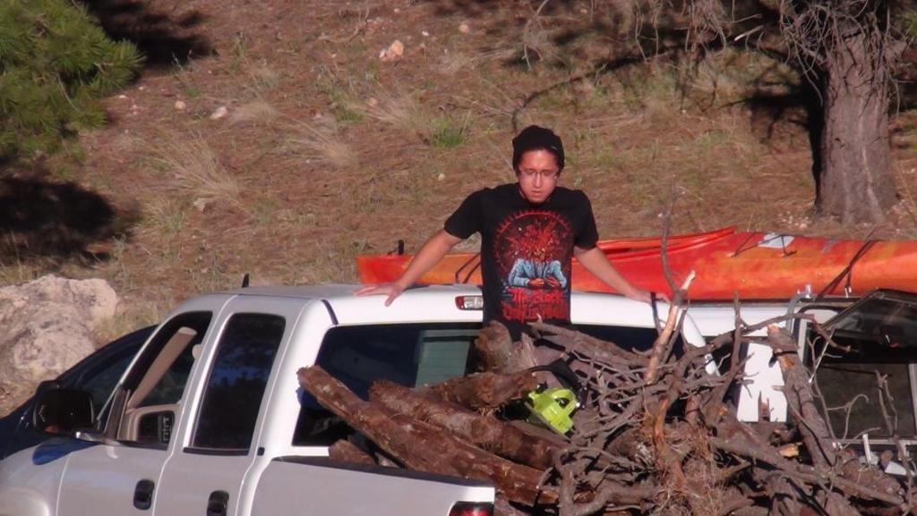 滿卡車的柴薪