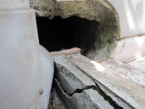 這是兩家共用的排水孔+下雨排水管