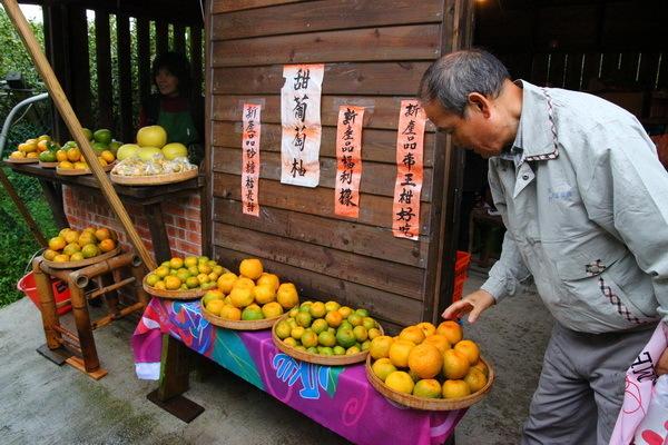 目前林家果園不僅有許多品種的水梨外,還有茂谷柑、海梨柑、桶柑、椪柑及廣東砂糖桔等柑橘。