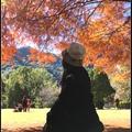 拍攝日期:2017/12/28  綠野山莊前草原上, 三株地標落羽松炙熱如火 總讓人感到激情而奮不顧身, 引誘旅人到火焰裡實現生命意義, 一種智靈的洗淨和療癒