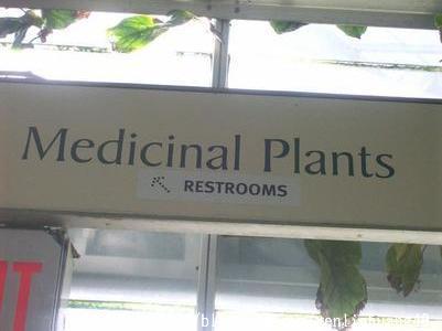 植物用藥區